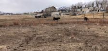 Gov. Cox issues emergency declaration over Utah's persistent drought conditions