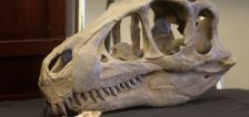 Bill to create Utahraptor, Lost Creek state parks clears Senate committee