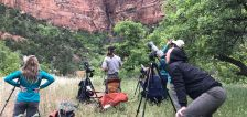 Zion National Park closes off climbing locations at 12 cliffs for seasonal nesting period
