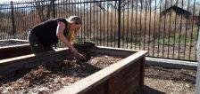 How gardening this spring can be physically and mentally therapeutic amid pandemic