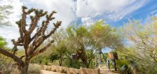 6 things to do in the Las Vegas area with your family