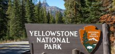 Yellowstone, Grand Teton parks to resume bus operations
