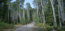 In need of balance: Mountain biking for senior citizens