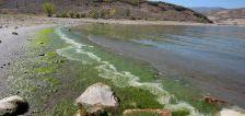 Authorities identify 17-year-old who drowned at Deer Creek Reservoir