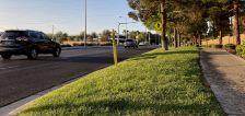 Should Utah enact Nevada-like lawn restrictions?
