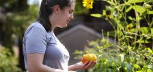 Pick a tomato, sunflower at Salt Lake's newest community garden, mayor says