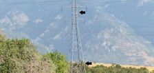 Teens setting up hammocking below high-voltage power lines in Weber County
