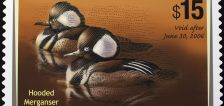 Hunting theme no longer mandatory in US duck stamp contest