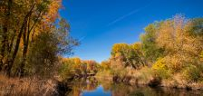 Fall forecast: Is this when Utah's trees will peak?