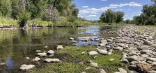 Prized trout streams shrink as heat, drought grip West