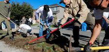Officials flip parking strips of 4 Salt Lake County homes from turf to new landscaping to showcase water conservation